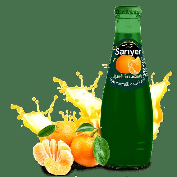 gazirovannyj napitok sariyer mandarin 0.2 l